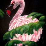 Zwergflamingo - Acryl auf LW/KR, 40 x 60 cm