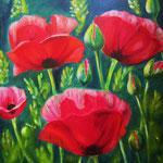 Opium-Poppies - Acryl auf LW/KR, 60 x 50 cm