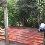 もちろん屋根の上の木も伐採します