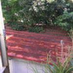 倉庫の屋根です。木が覆いかぶさる→雨水が溜まる。これが雨漏りの原因になったのですね