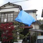 とにかく応急処置をということで、嵐の中屋根に上がってブルーシートを貼ることにしました。