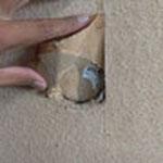 穴が開いている箇所があったので、修復します。
