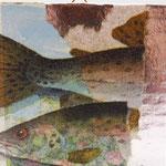 """Collage """"Fische ..."""", 7 x 7 cm, Papiercollage auf Pappwabenplatte, Heike Roesner/2020"""
