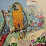 """Collage """"Blumen lieben Papageien"""", 10 x 10 cm, Papiercollage auf Pappwabenplatte, Heike Roesner/2020"""