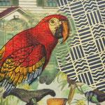 """Collage """"Im Ort wohnte ein Papagei"""", 7 x 7 cm, Papiercollage auf Pappwabenplatte, Heike Roesner/2020"""