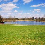 Sommerliches Badeparadies: Der Mettmenhaslisee ist nur fünf Fussminuten entfernt gelegen.