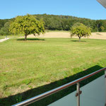 Hier hat man den «Freizeitpark» vor und hinter der Haustüre! Traumhafter Blick vom Balkon im OG.
