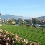 Traumhafte Lage: Die Aussicht ins Wynental und hinunter auf Menziken und Reinach