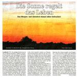 Torgauer Zeitung Dezember 2011