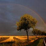 Regenbogen am 19.7. bei Werdau