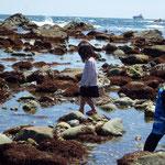 帰りは海岸沿いに走り、途中の浜に降りてみたらミナ(シッタカ)がいっぱいいましたが、まだ小さかったので採らずに帰りました。