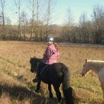 Edelweis qui apprend à Cookie son metier de cheval de rando