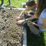 activité de jardinage en gîte d'enfants