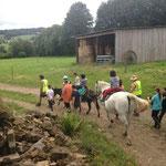 balade avec les ânes et le cheval