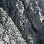 名物・カニのタテバイ 劔岳