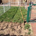 der Welpenauslauf im Garten wird ebenfalls neu gestaltet
