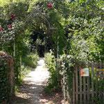 Kräutergarten der Klostervilla