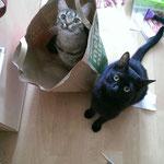 Lucia und Lexy