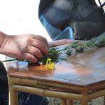 Kräuter zur Jahreszeit: Beifuß und Johanniskraut