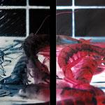 2011 - hot gambas - mixed media with oilfinish on PVC - 160 x 120