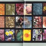 Whats next Ausstellung Technische Universität Wien, Wunderkammer, Katalog