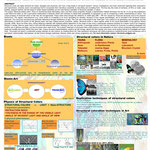 Nanopaprika Posterkonferenz: Bionic-Art: Structur.makes.colour