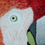 Papagei - Acryl auf Leinwand, 2007