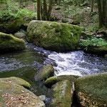 wildromantisches Höllbachtal