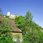 Ferienhaus Marion, Ausblick auf die Burg Falkenstein