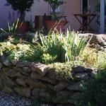 Trockensteinmauer mit Bepflanzung