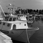 Fischerboot im Hafen von Savudria