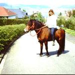 Oberwesterwald