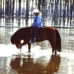 Hochwasser an der Ems 1994