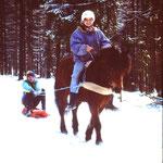 Schlittenfahren im Westerwald