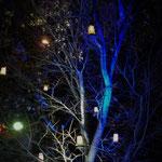 LED特殊照明工房 SANOKIYAさんの協力のもと安心院支所前の木にランタンが灯りました!