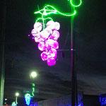 安心院の夜を彩るぶどうイルミネーション