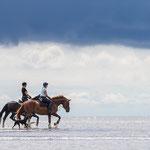 Pferdeshooting in St. Peter-Ording mit Fotografie Annett Mirsberger