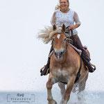Shooting mit Reiterin am Strand mit tierpfoto