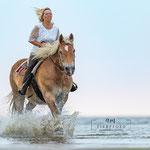 Shooting mit Pferd-Actionfoto in St. Peter-Ording tierpfoto
