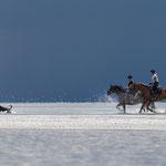 Reiterinnen am Strand in St. Peter-Ording-Fotografie Annett Mirsberger