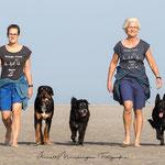 Schwarzer Schäferhund und Mischlinge mit Frauen im Strand