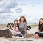 Mutter mit Kindern und Doggen am Strand