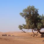 Een paar dagen Sahara