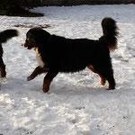 Omi liebt den Schnee
