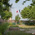 Intérieur cours d'école, protection sommaire de canisses + plantation d'arbustes par les parents, contre les pesticides classés C.M.R. auprès de l'école de Saint-Genès-de-Lombaud. 15 juin 2017