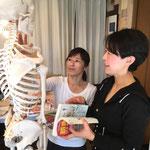 等身大の骨格模型を使って学びます