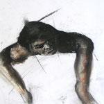 59,7 x 42,0 cm | Pastell | Bleistift