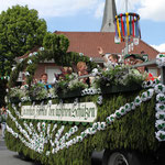 Der Thronwagen 2014