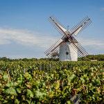 le Moulin Blanc et itinéraire route des vins
