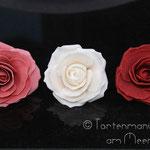Die ersten Rosen